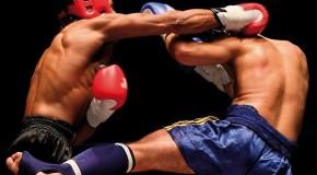 Championnat Fédéral IDF de kick boxing