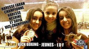 Championnat IDF FFKM 2016 de kick boxing