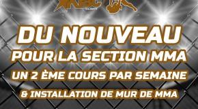 NOUVEAU pour la section PANCRACE/MMA